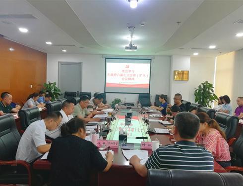 集团公司传达学习市政府八届七次全体(扩大)会议精神